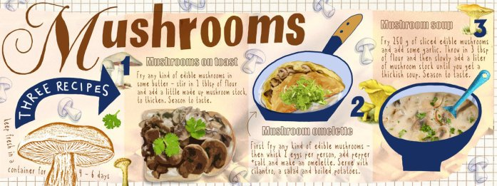 We Love Mushrooms by Jean Cameron. They Draw and Cook.