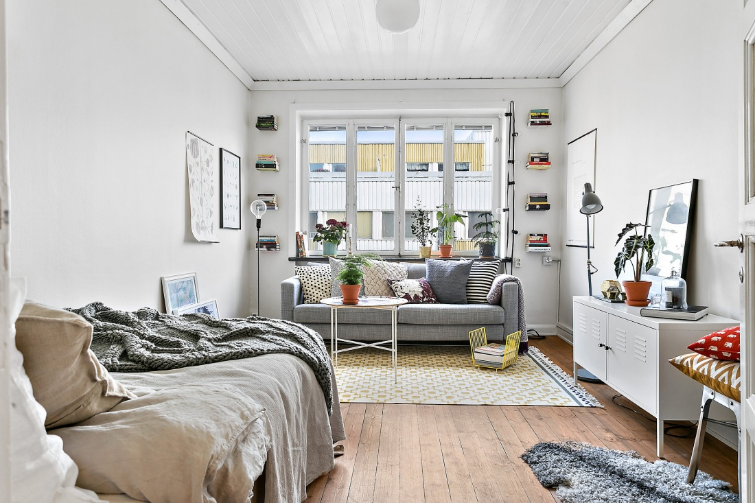 cool-fresh-studio-apartment4
